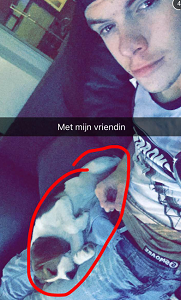 hond menno en mark